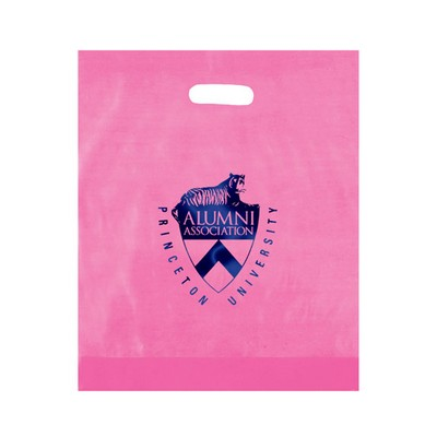 "Frosted Die Cut Plastic Bag (15""x18""x4"") - Flexo Ink"